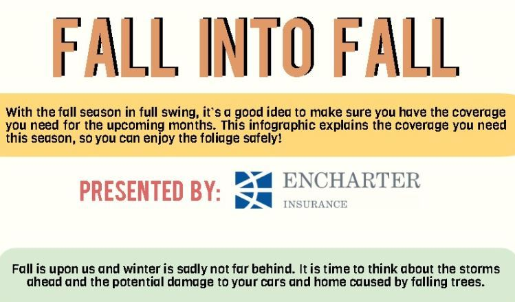 Fall Infographic Small Image