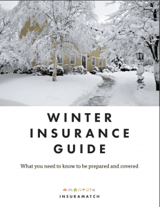 Download the Winter Insurance Guide for step-by-step instructions on how to prepare your home and car for this New England winter.
